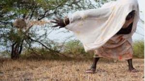 STOPPONS L'ACCORD DE PARTENARIAT ÉCONOMIQUE QUI APPAUVRIRAIT L'AFRIQUE DE L'OUEST !
